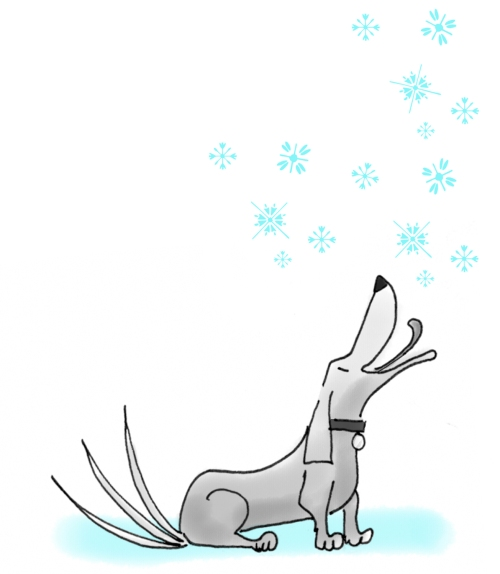 IF-snow