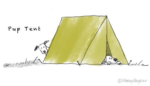 IF-Shelter