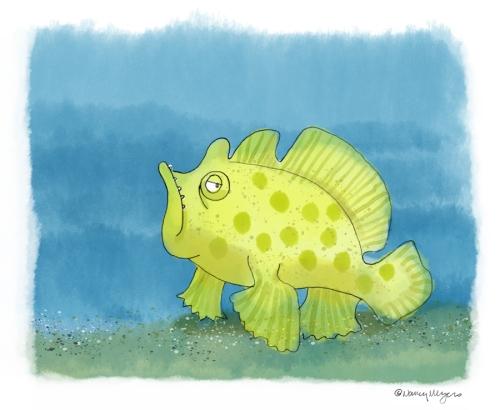 Frogfish-UFF1